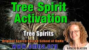 Tree Spirit Activation by the Tree Spirits