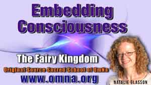 Embedding Consciousness by the Fairy Kingdom