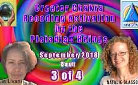 Creator Chakra Recoding Activation by the Pleiadian Beings Part 3 of 4