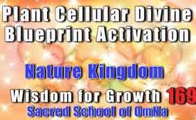 Plant Cellular Divine Blueprint Activation